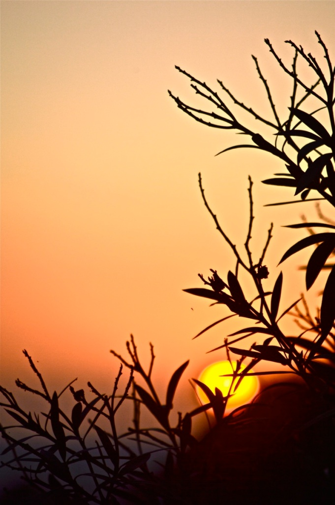 August 14 sunset 1
