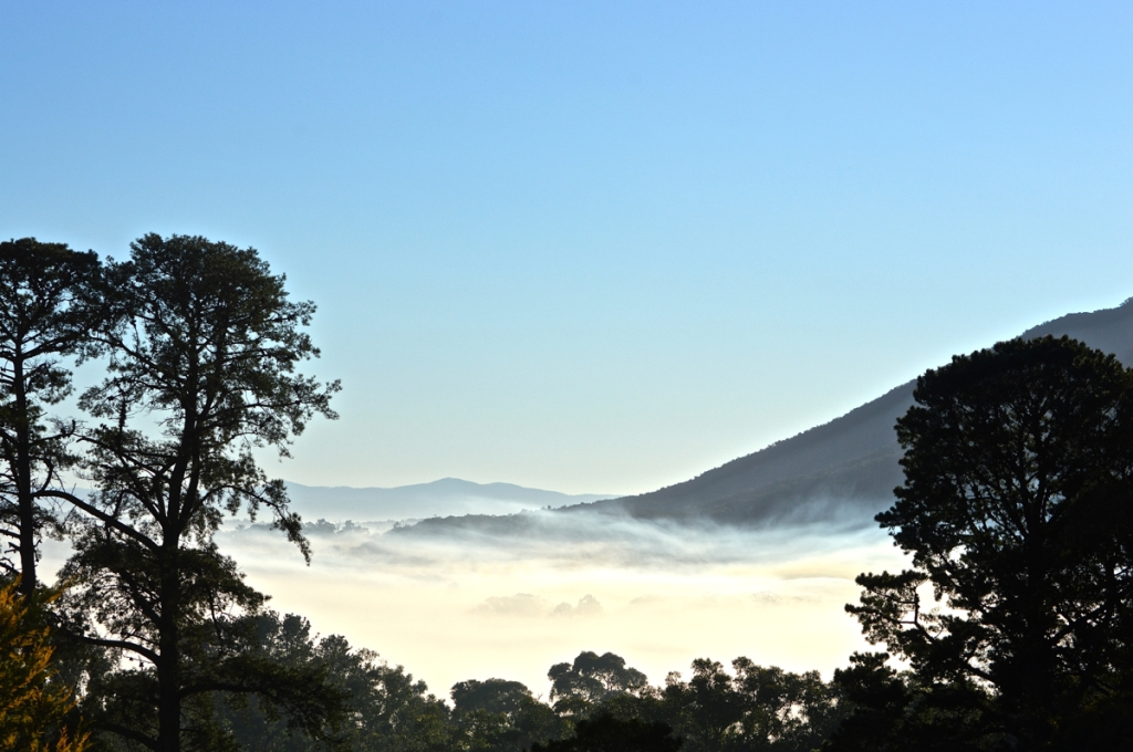 August 15 Fog - 2