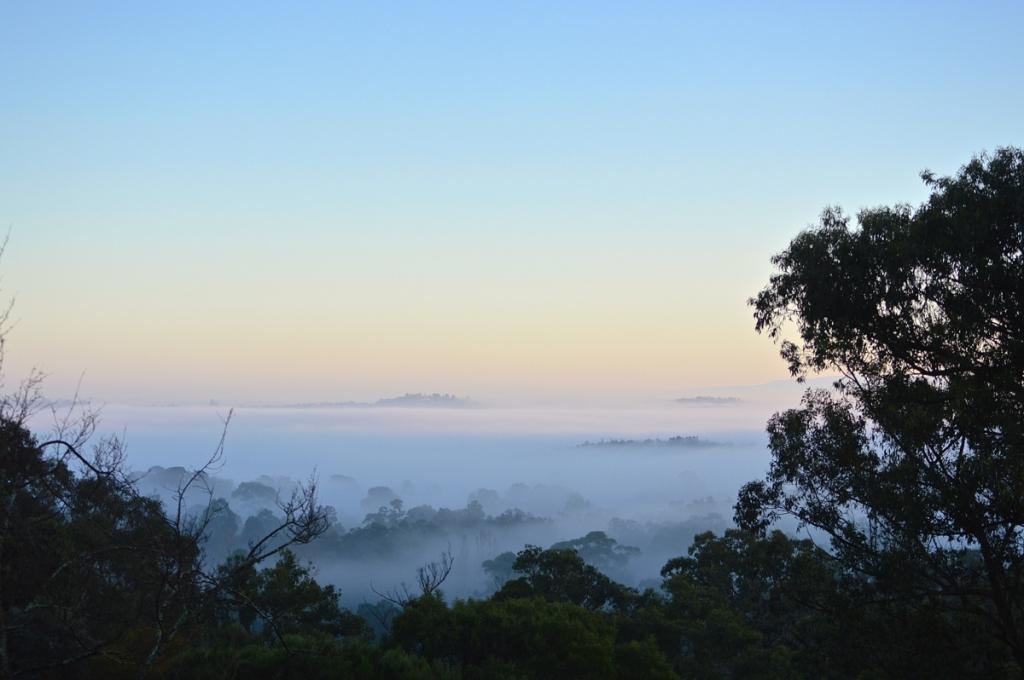 August 15 foggy start!
