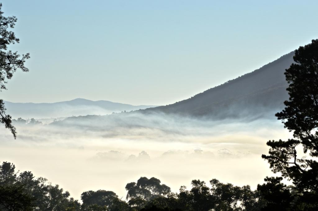 August 15 Fog 3