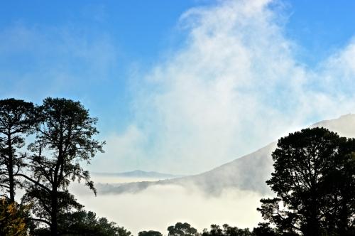 August 28 foggy start