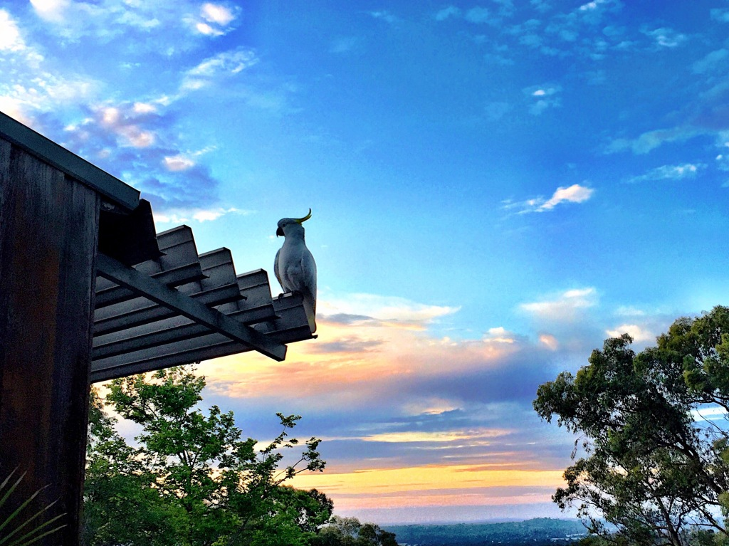 October 24th sunset - Melbourne